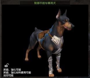 制御不能な軍用犬